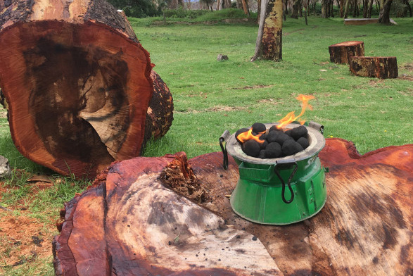 Cleaner-burning biomass fuel briquettes produced by Sanivation to replace firewood or charcoal for cooking. (Photo: Sanivation)