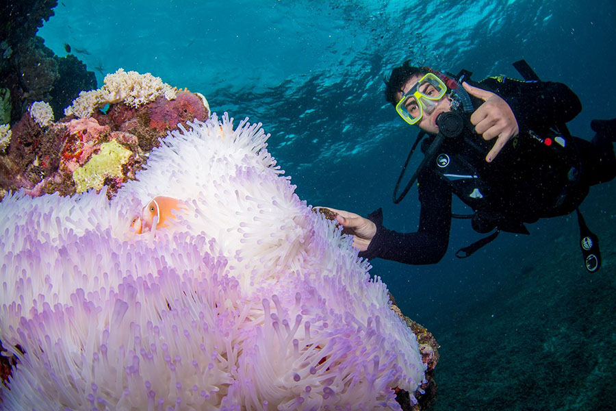 Andrew Melissas diving at the Great Barrier Reef during his semester studying abroad in Australia with support from the Joe S. Mundy Global Learning Endowment.