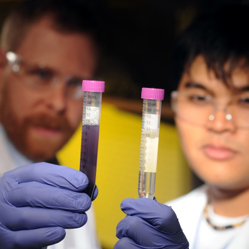 Joe Brown and Andrew Loo hold test tubes with water that has been tested for E coli bateria. The purple water is contaminated.